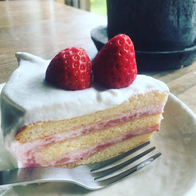 見てくれが本当にアレだけど、何とか作れました。いちごババロアケーキ途中固まらない気がしてゼラチン少し追加で入れたら割と硬めに。夫に「何コレ、何コレ」て言われた。