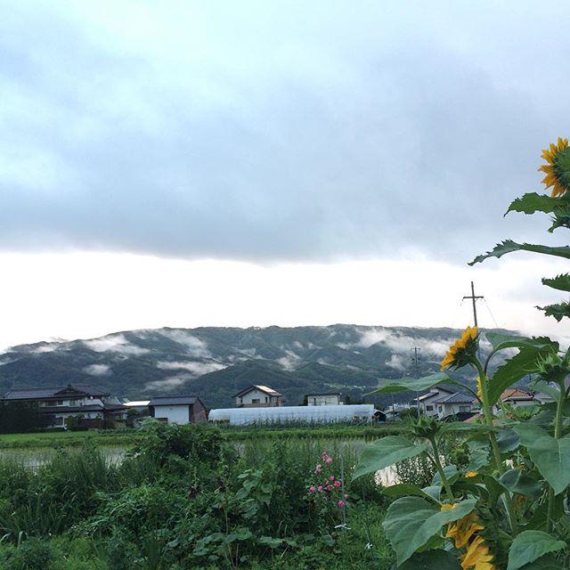 雨上がりの山もかっこよい。