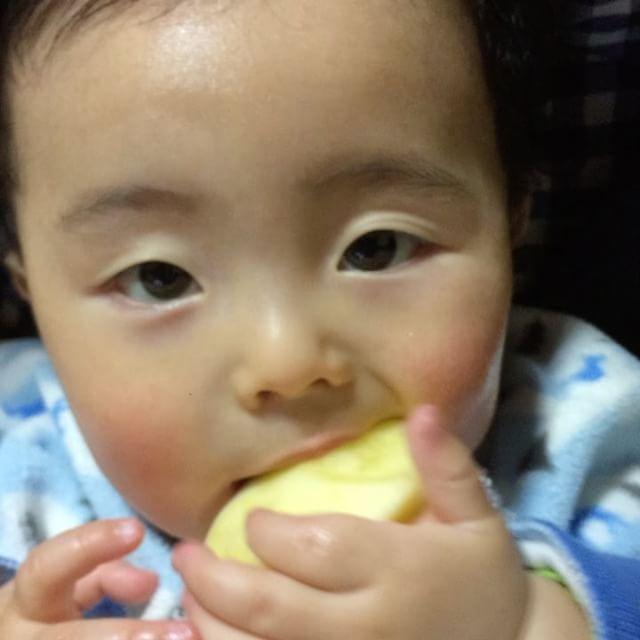 歯が生えてきて痒いのか、好きなのか、りんごへの執着がすごい