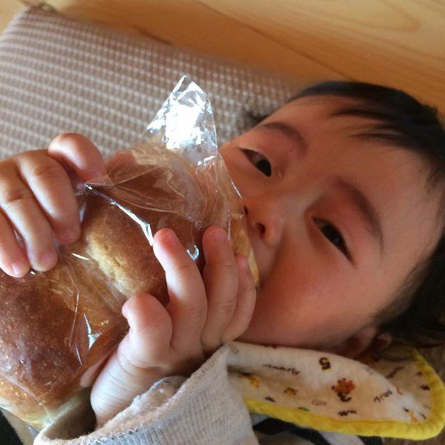 泣いてるけど、パンを手放さない。(フラッフィーのクリームチーズ入りのパン)はなして!わたしたべるから!