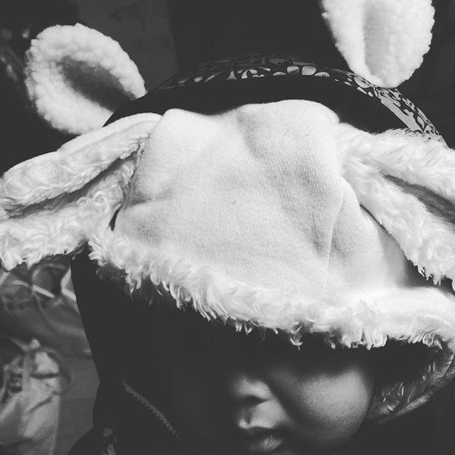 なんで子供のものって耳ばっかりつくの?おかげで耳だらけだよ。#耳