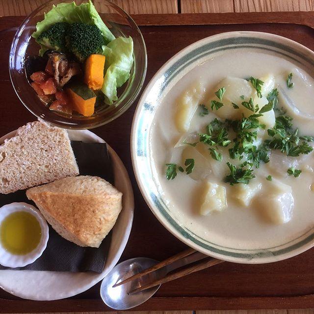 今月のフクボタカフェはシチュー!3月はお休みの週があるので今週か第4週目しか味わえません!! 食べて欲しい美味しさ!