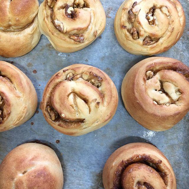 フラッフィーのリトルボネットというパンが大好きで、想像で焼いてみたらすごい美味しそうにやけた。黒糖くるみパン。熱くてまだ食べられません。