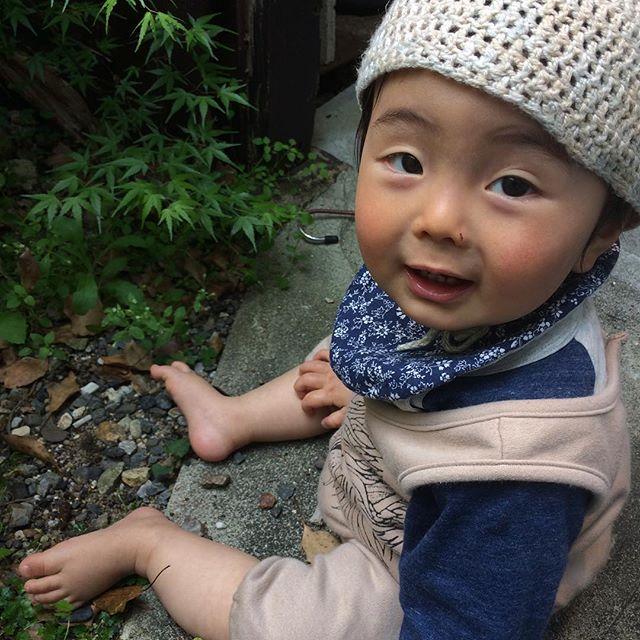 京都に来ても石いじり