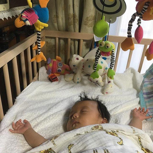 自分で手を吸って寝ることを覚えた…神。3ヶ月。 #オブジェと人形がアメリカン