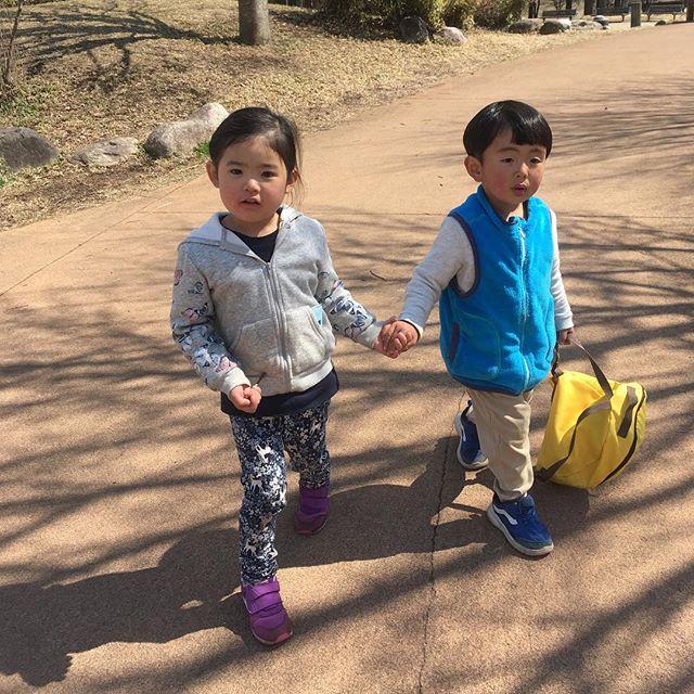 いつのまにか、この2人が大の仲良しになってるー!! この前まで取っ組み合いに近い喧嘩してたのに。みんちゃんの方が歩み寄ってくれてる。お母さん達は嬉しいよ大芝がいい季節になってきました。やりました。こっちのもんです。遊びましょう!!