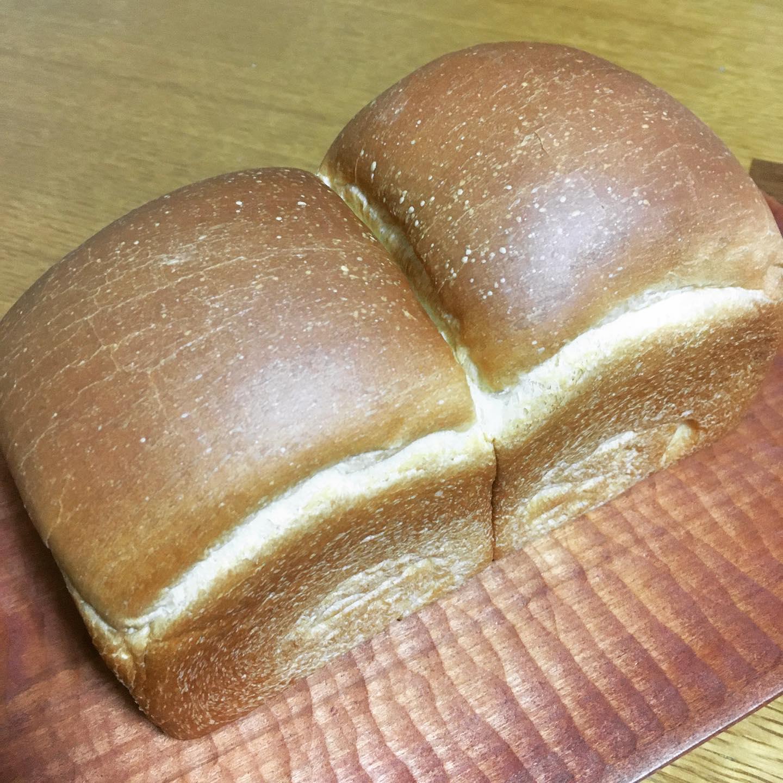 本日も木曜日のパン、沢山買っていただきありがとうございましたそろそろ飽きられるだろうなと毎回思い、しかし毎回ギリギリまで予約いただき嬉しいです。そして来週は、粉が届かないのでおやすみです!コロナで業務用の粉も発送延滞です。今週はほぼ毎日仕込み、何かしら焼きました。遊びで作る自家消費のパンが本当に楽しい。ハード系はやったことなかったけど、スコーンを作っている地元産の小麦(中力粉)でできるしちと楽しくなってきました。しかし、調子乗ってやってたのか昨日からミス連発。発酵見極めミス、酵母入れわすれミス、金庫持ってきわすれミス、酵母の量足りない事件、効率悪い焼きのスケジュール…楽しいはずのパンが少し試練に!!パン屋にはなれないことを確信。細く長く続けていきたいから無理しないように楽しみたい。6月からはスコーンに力入れて、委託で置くよ!と声かけてくださっているお店に少しずつ出せたらいいなと思ってます。新たな挑戦をしつつ、定番を極めていきたい!